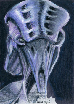 Laura Inglis Sketch - Species 8472